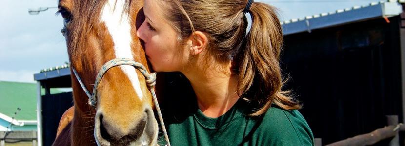 Werk als vrijwilliger mee bij een diergeneeskunde en dierverzorging project