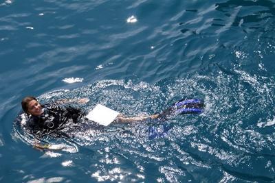 Projects Abroad vrijwilliger duikt in Thailand om mee te helpen met onderzoek naar vissen
