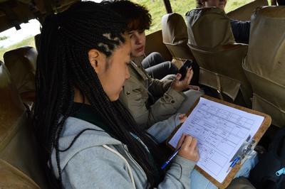 Tijdens de natuurbehoud jongerenreis naar Kenia helpt je bij het monitoren van de bedreigde Rothschild giraffe.