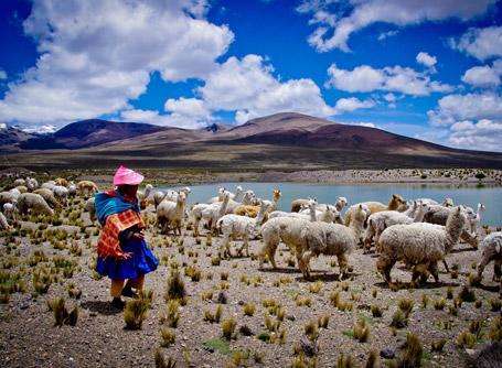 Vrijwilligerswerk in Peru