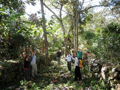 Vrijwilligerswerk archeologie project in Peru