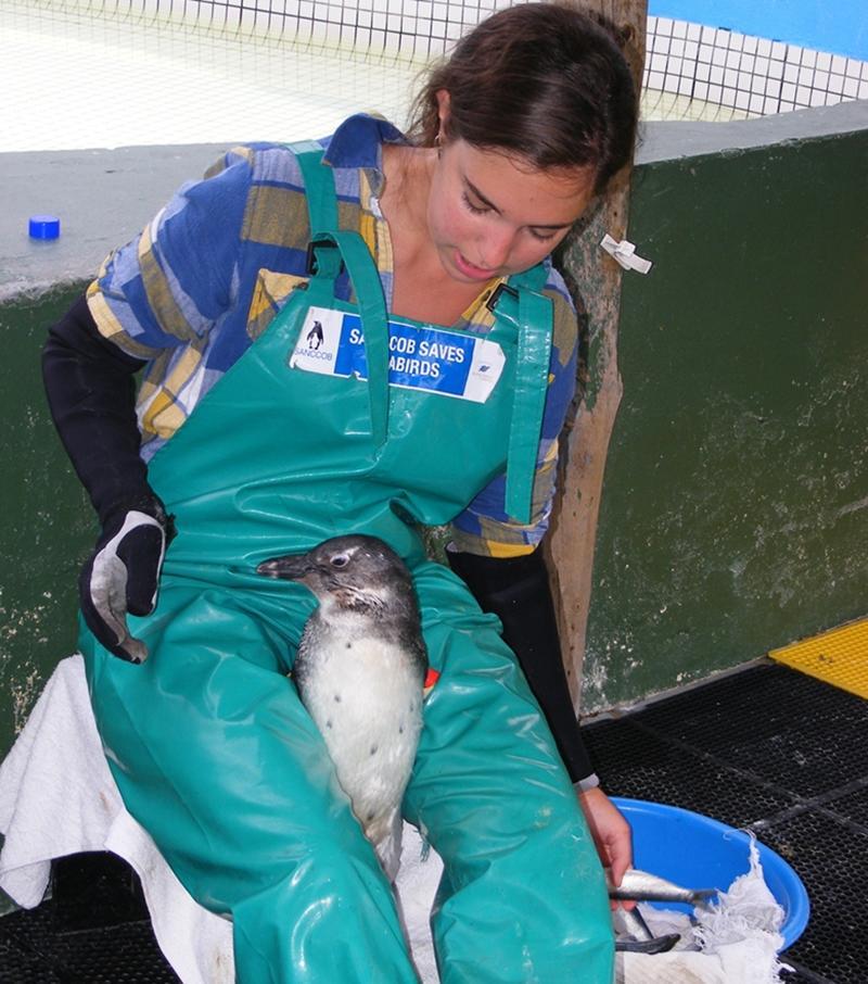 Vrijwilligerswerk bij het dierverzorgingsproject in Zuid-Afrika