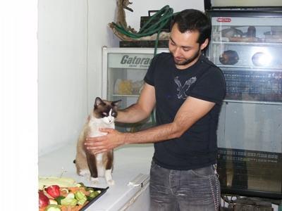 Vrijwilligerswerk buitenland dieren - help dieren wereldwijd