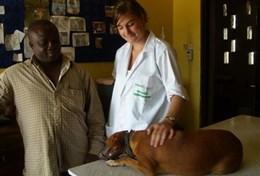 Vrijwilligerswerk met dieren in het buitenland: Ghana