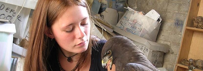 Vrijwilligerswerk buitenland dieren: waardevolle projecten wereldwijd