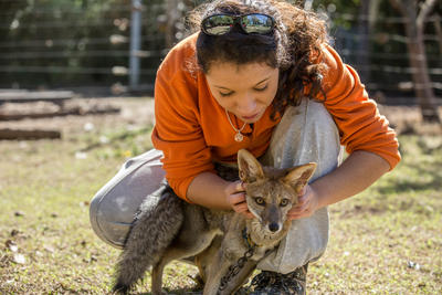 Vrijwilligers die met dieren willen werken in het buitenland kunnen bijvoorbeeld naar Mexico om voor mishandelde dieren te zorgen.