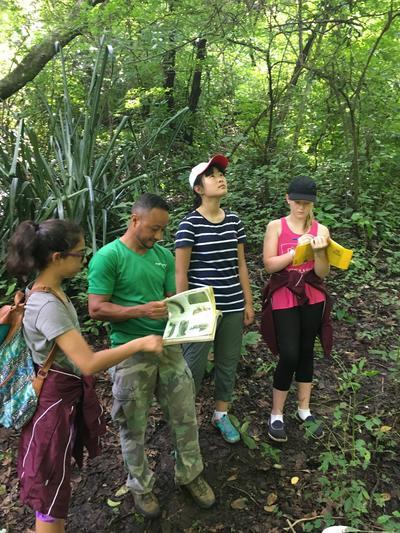 Tijdens de groepsreis voor jongeren naar Costa Rica verken je bijvoorbeeld het regenwoud.