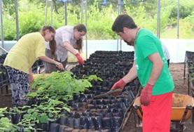 Help tijdens deze groepsreis voor jongeren met vrijwilligerswerk bijvoorbeeld in de kwekerij van het Galapagos National park.