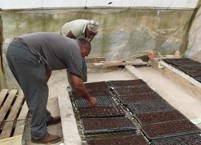 Moestuin aanleggen bij het natuurbehoud project