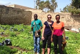 Vrijwilligerswerk in Senegal: Microkrediet