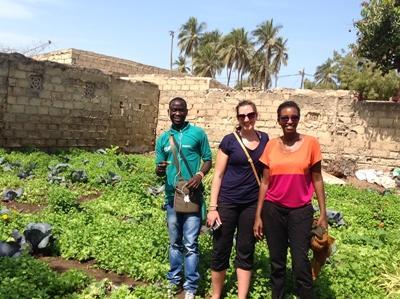 Vrijwilligerswerk microkrediet project in Senegal