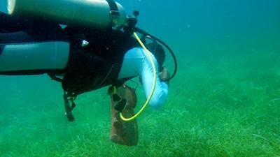 Een vrijwilliger zoekt naar afval op het natuurbehoud project in Belize