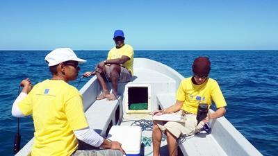 Vrijwilligers doen onderzoek op zee in Belize