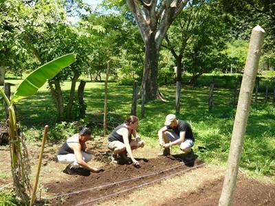 Vrijwilligerswerk natuurbehoud project in Costa Rica