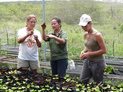 Vrijwilligerswerk natuurbehoud project in Ecuador