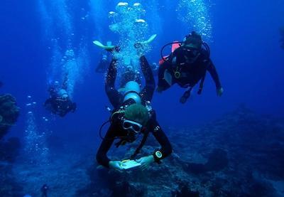 Vrijwilligers tijdens een Divemaster duik