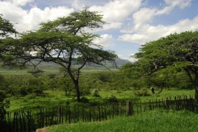 Natuur-in-Kenia