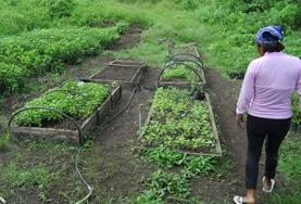 Natuurbehoud & Milieu projecten in het buitenland : Ecuador