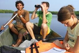Neem deel aan onderzoek naar zeeschildpadden tijdens dit natuurbehoud vrijwilligerswerk in Mexico.
