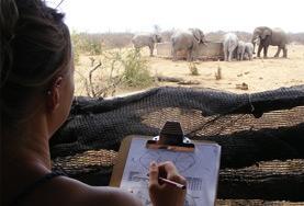 Help als vrijwilliger bij onderzoek naar bedreigde dieren in Zuid-Afrika.