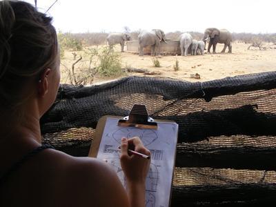 Vrijwilligerswerk bij het natuurbehoudproject in Zuid-Afrika