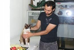 Vrijwilligerswerk met ervaring voor diergeneeskunde: projecten voor professionals: Mexico
