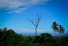 Medisch vrijwilligerswerk met ervaring: projecten voor professionals in de gezondheidszorg: Samoa