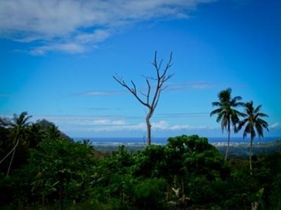 Vrijwilligerswerk ergotherapeut in Samoa