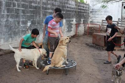 Kinderen komen in contact met honden tijdens het Hondentherapie project in Argentinië