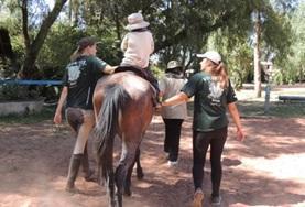 Je helpt bij de verzorging van de paarden en de therapiesessies voor kinderen tijdens dit project in Bolivia.