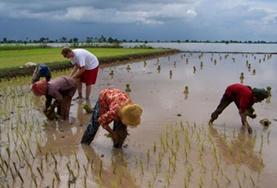 Groepsreizen voor 50-plussers met vrijwilligerswerk: Cambodja