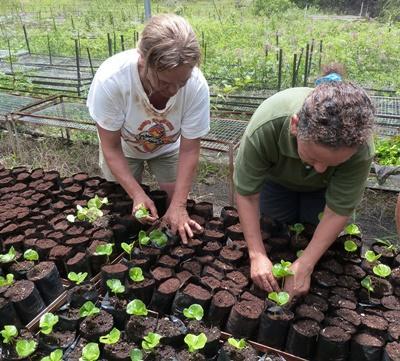 Vrijwilligers bij het natuurbehoud project op de Galapagos eilanden