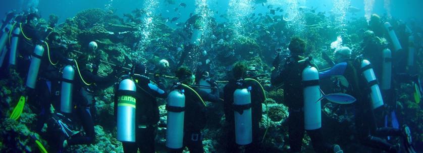 Duiken bij Natuurbehoud & Milieu project Fiji