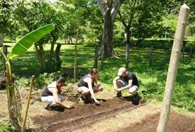 Vrijwilligers helpen in Costa Rica bij het planten van nieuwe gewassen in een kweekerij.
